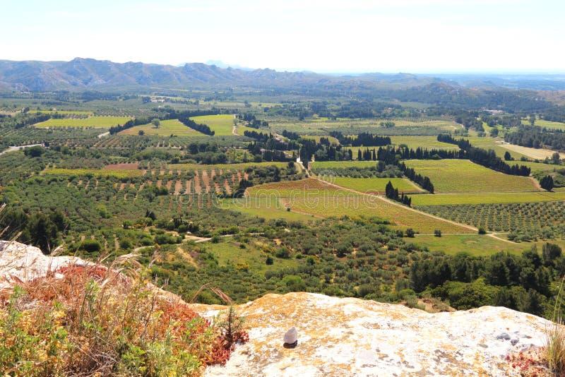 Winnicy i oliwni gaje wokoło Château des Baux, Francja obraz stock