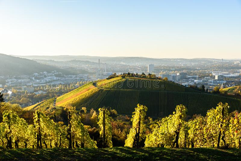 Winnicy przy Stuttgart - pi?kny wino region w po?udnie Niemcy zdjęcie royalty free