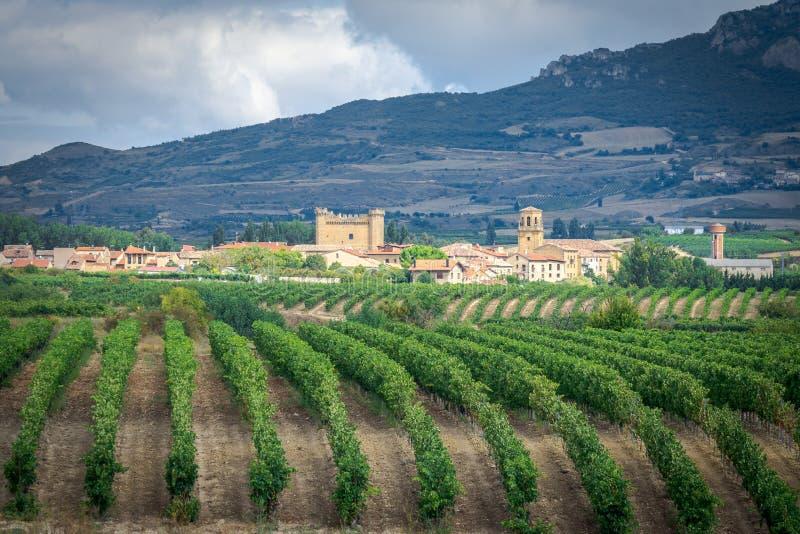 Winnicy z Sajazarra wioską jako tło, los angeles Rioja, Hiszpania fotografia stock