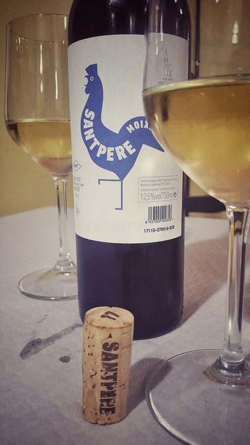 Wino biel Spain obraz stock