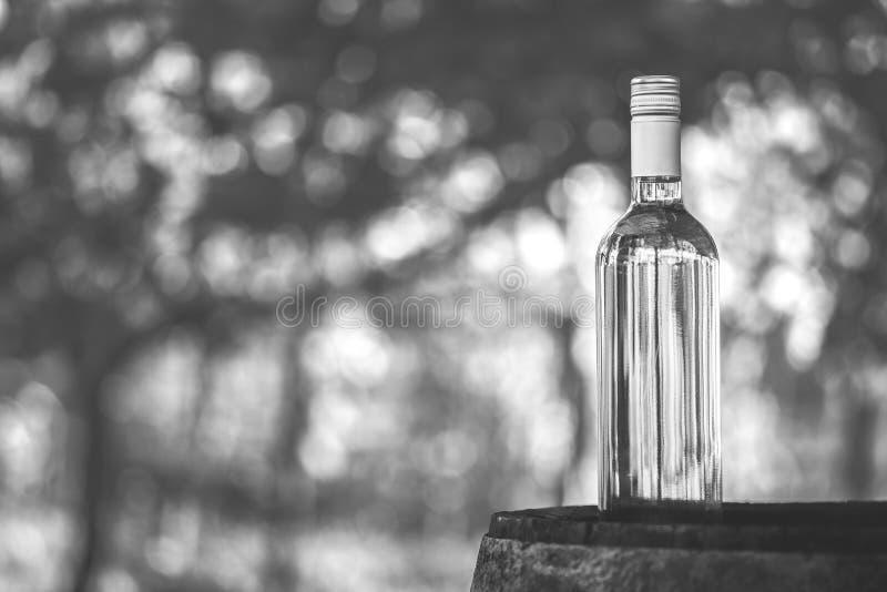Wino butelka na baryłce z plamy tłem w hungarian winnicy fotografia royalty free