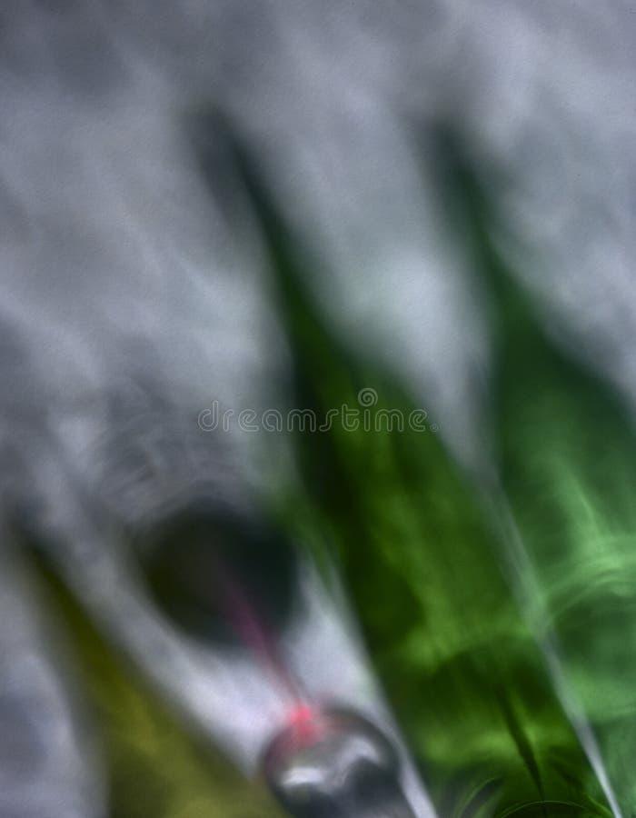 Wino butelki i szkło czerwone wino zdjęcia royalty free