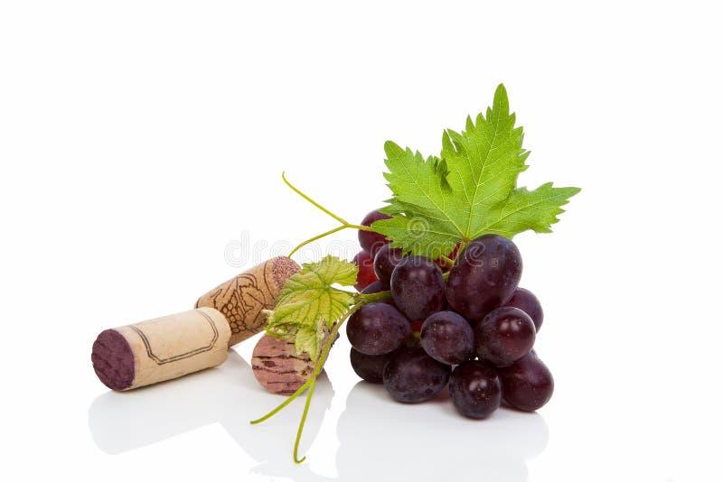 Wino korek i win winogrona. obrazy stock