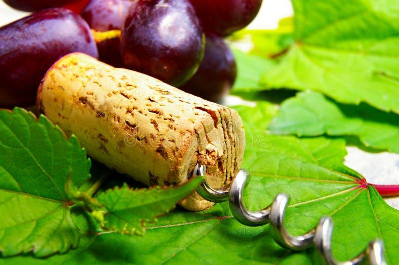 wino korka obrazy stock