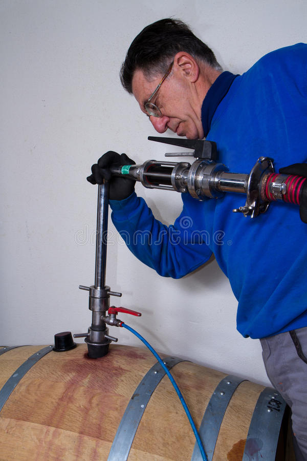 Wino lochu wina producent obrazy royalty free