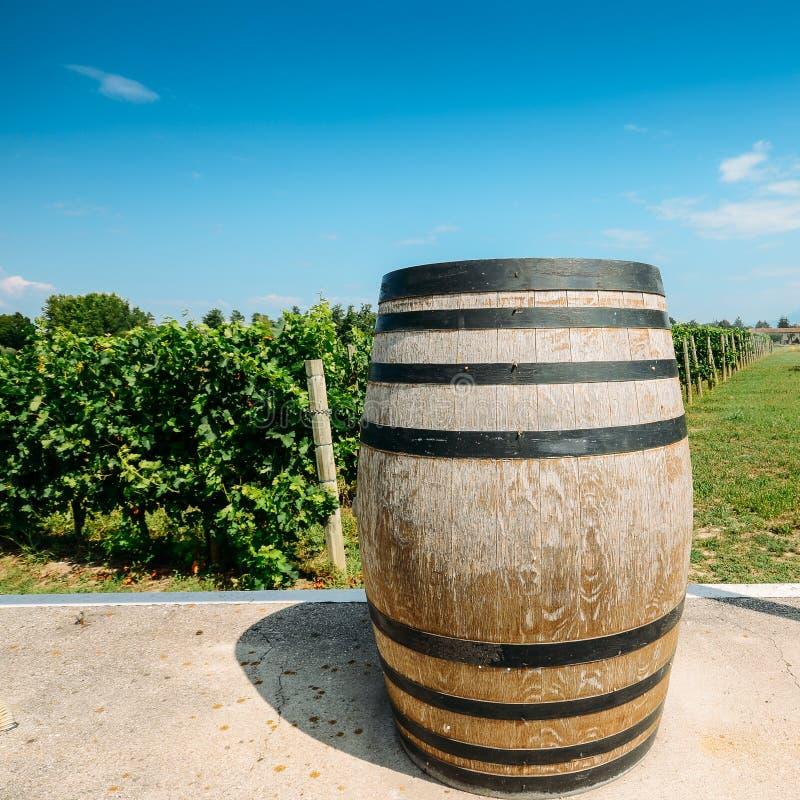Wino z drewnianą baryłką na winnicy w Lombardy, Włochy fotografia royalty free