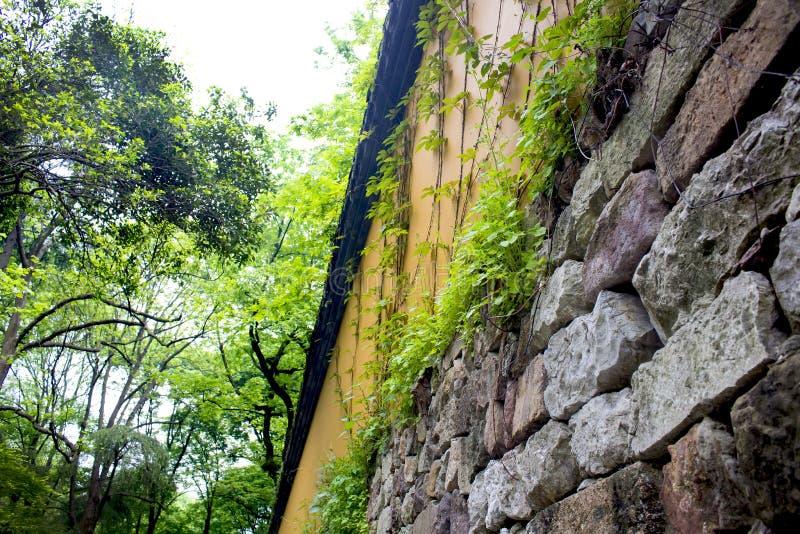 Winograd na ścianie, Lingyin świątynia, Hangzhou zdjęcia royalty free