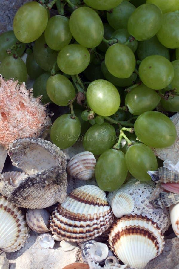 Winogrona, figi i skorupy, obraz stock