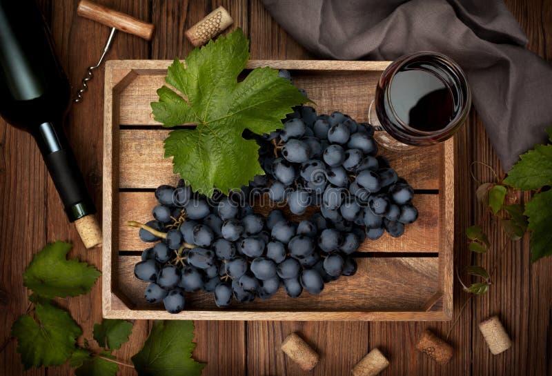 Winogrona i wino zdjęcia stock