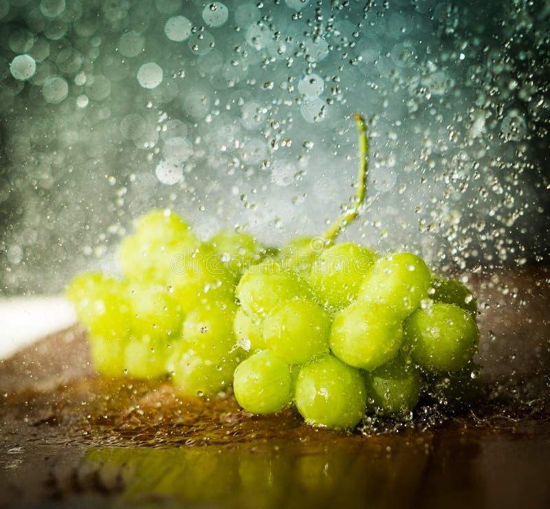 Winogrona pod wodnymi kroplami zdjęcia royalty free