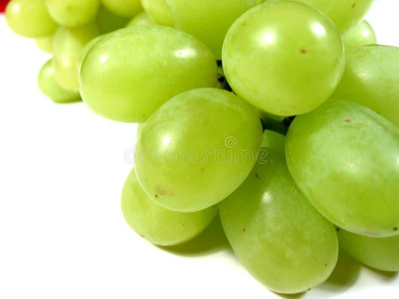 winogrona zielone makro fotografia stock
