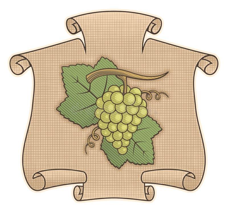 winogrono ślimacznica ilustracja wektor