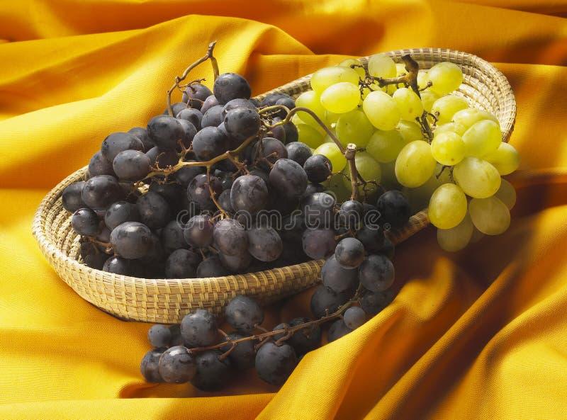 Download Winogrono zdjęcie stock. Obraz złożonej z vite, desery - 13341610