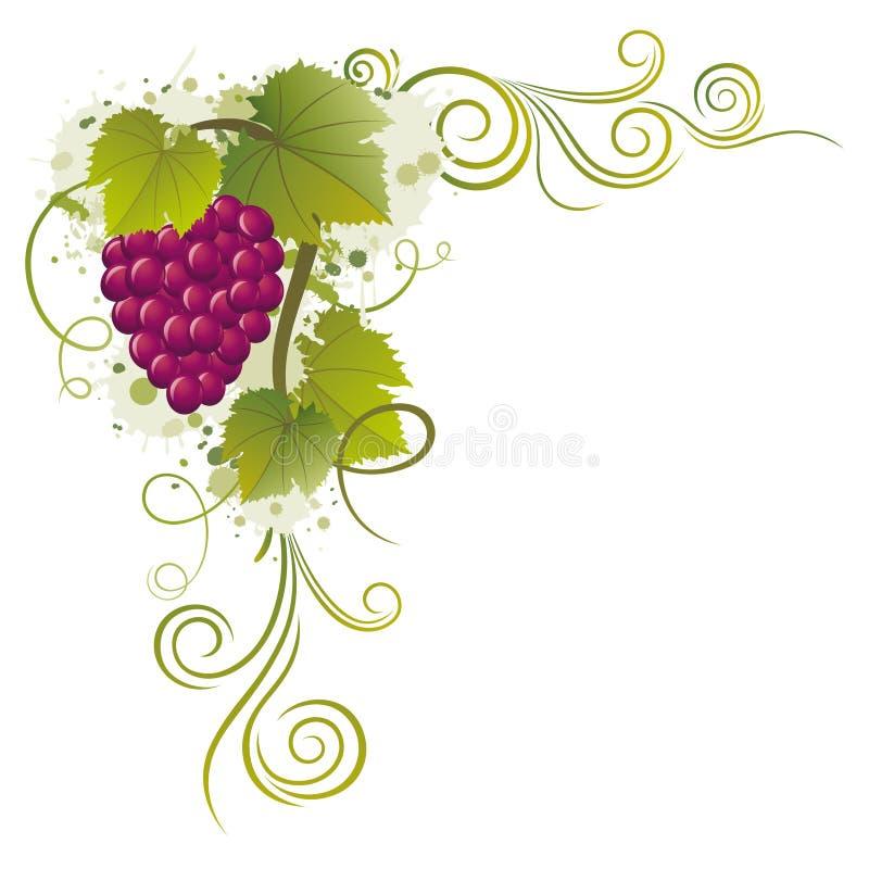 winogrono ilustracja wektor