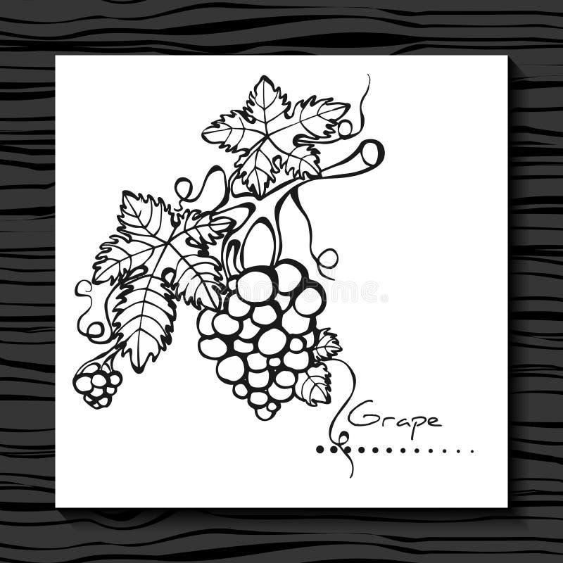 Winogrono na białym tle nakreślenie wykres royalty ilustracja