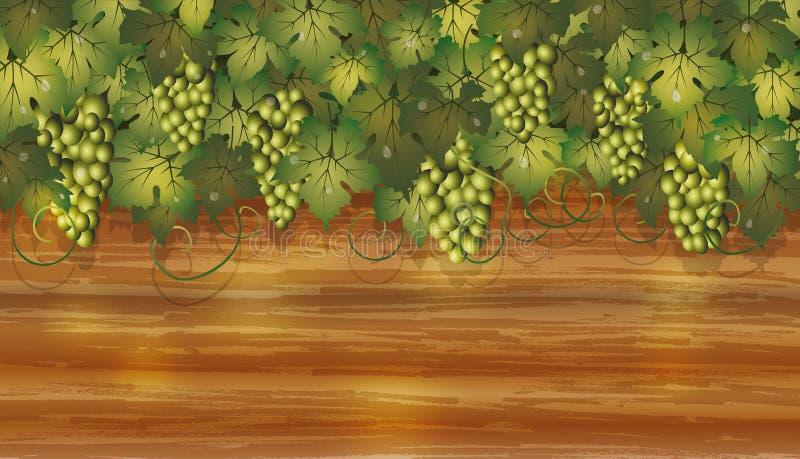 Winogrono sztandar z drewnianym tłem royalty ilustracja