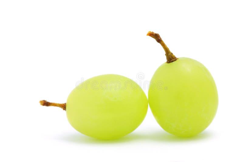 winogrono zieleń fotografia stock