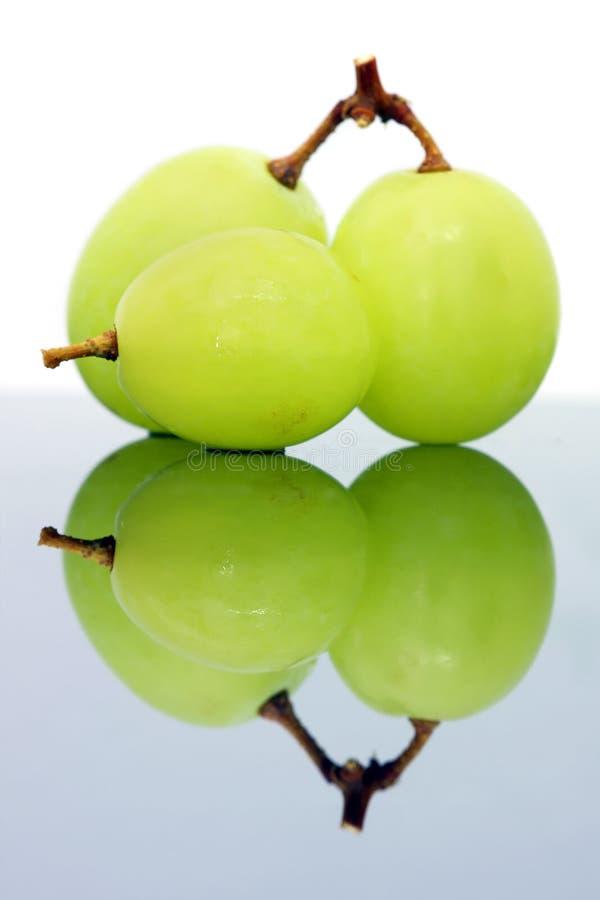 winogrono zieleń zdjęcie stock