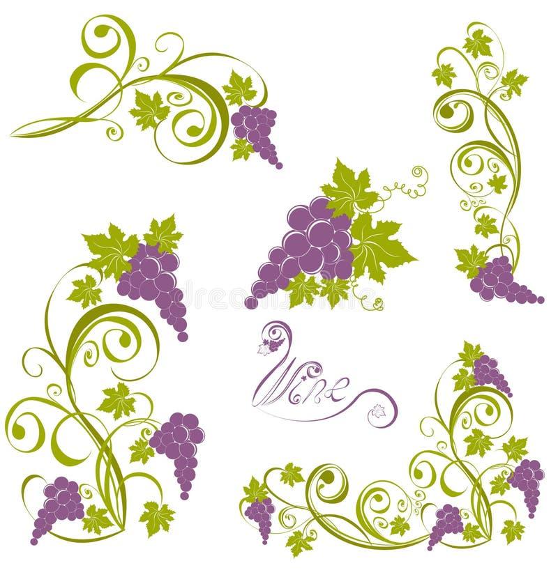 Winorośl. Wino projekta elementy ilustracja wektor