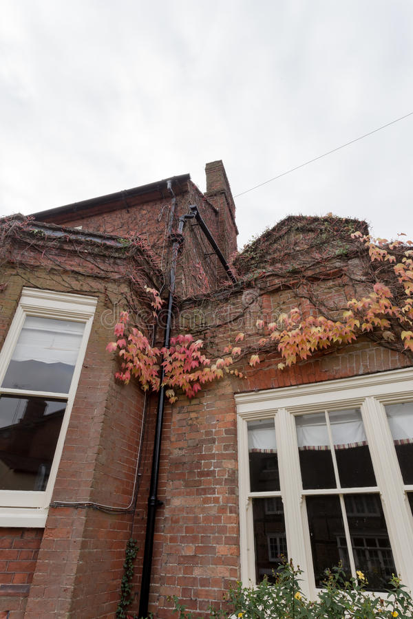 Winslow, Buckinghamshire, United Kingdom, October 25, 2016: Brick house with red creeaping ivy on the Horn street on grey chilly. Morning royalty free stock images
