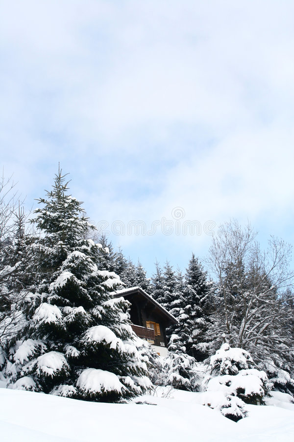 Download Winter stock photo. Image of pine, alpine, season, peaceful - 1590790