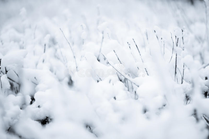 Download Winter stock photo. Image of snow, nature, cold, weather - 22492238