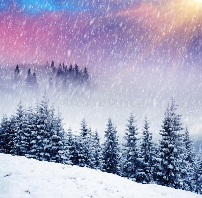 Download Winter stock image. Image of dawn, climate, christmas - 25151857