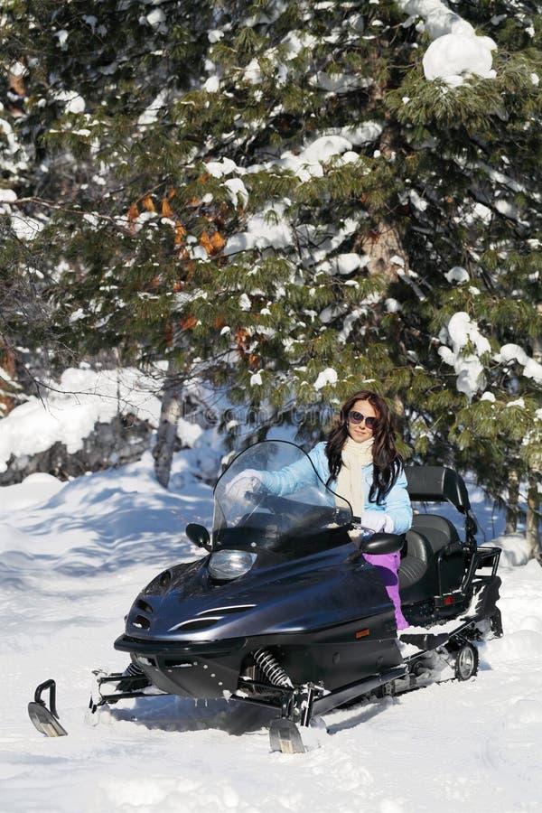 Download Winter stockbild. Bild von energisch, nachdenklich, feiertag - 26366145