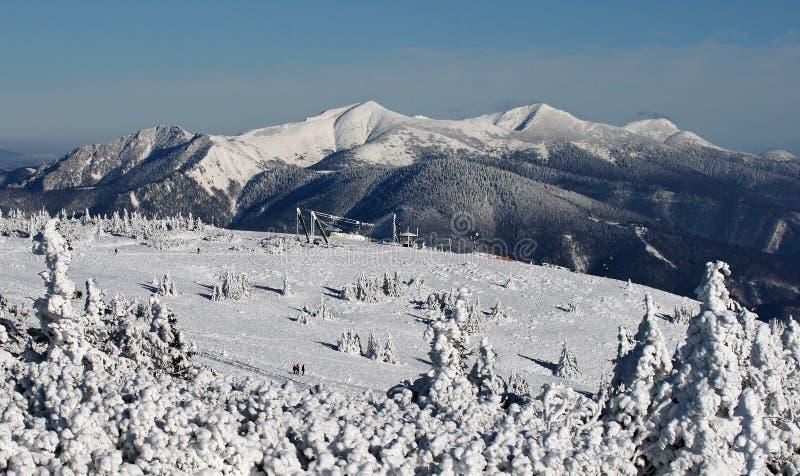 Winter stock photography