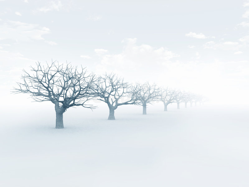 Winter. A row of trees; computer generated vector illustration