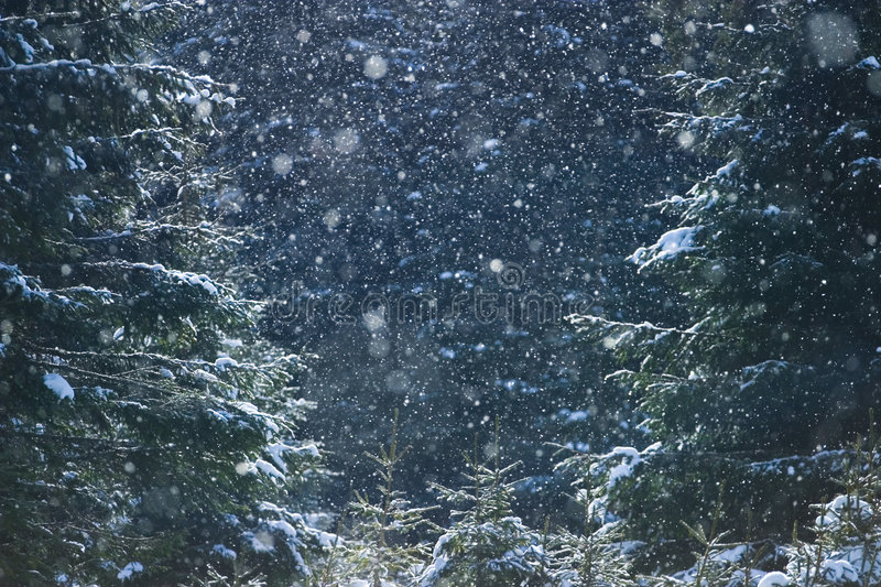 Winter abstract background stock images