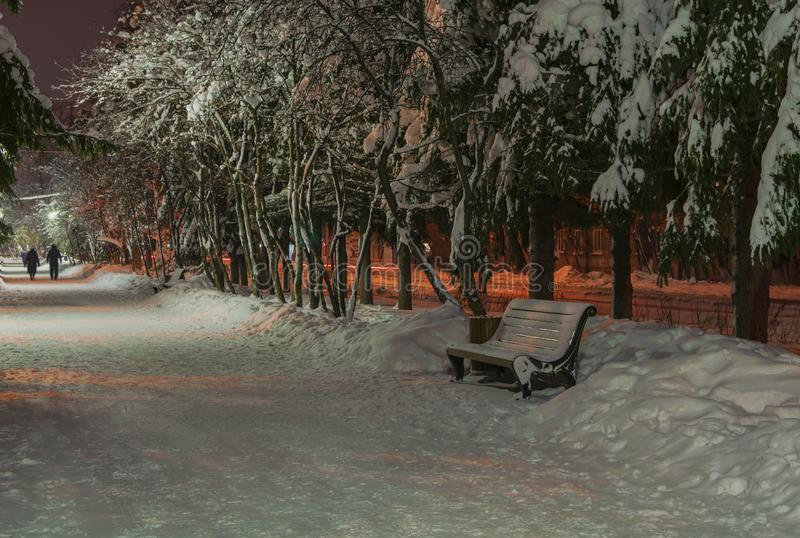 Park bench in winter alley royalty free stock image