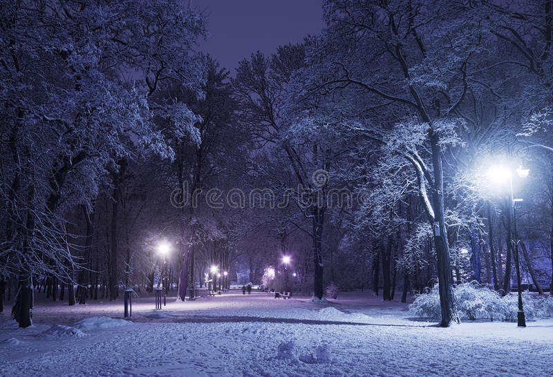 Winter alley at night royalty free stock photos