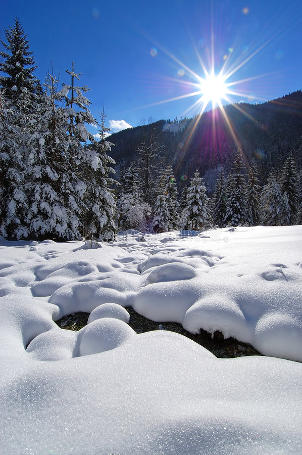 Winter in alpine valley stock photography