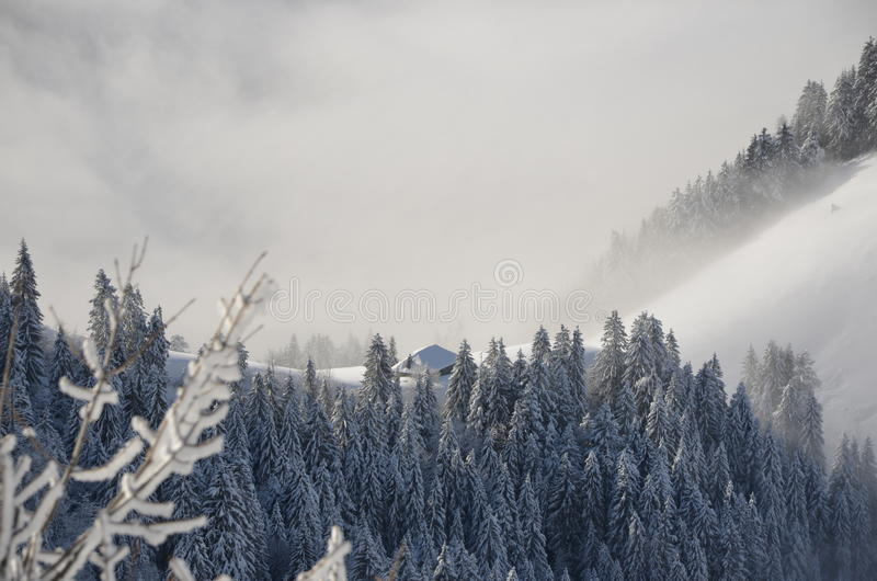Winter in Alps royalty free stock photos