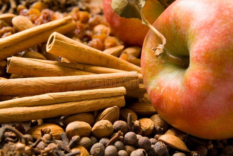 Winter aroma. Apples, cinnamon sticks, cloves, allspice, raisins and almonds make up a diversity of winter aromas royalty free stock photos