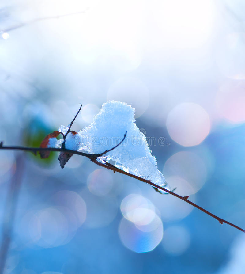 Download Winter Art Design. Snow Royalty Free Stock Images - Image: 23018829