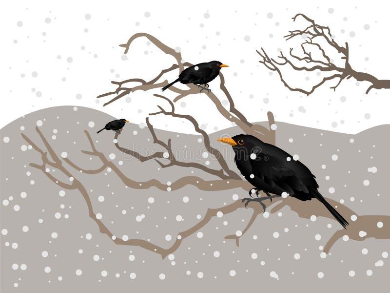 Download Winter atmosphere stock image. Image of snow, beak, nature - 28746793