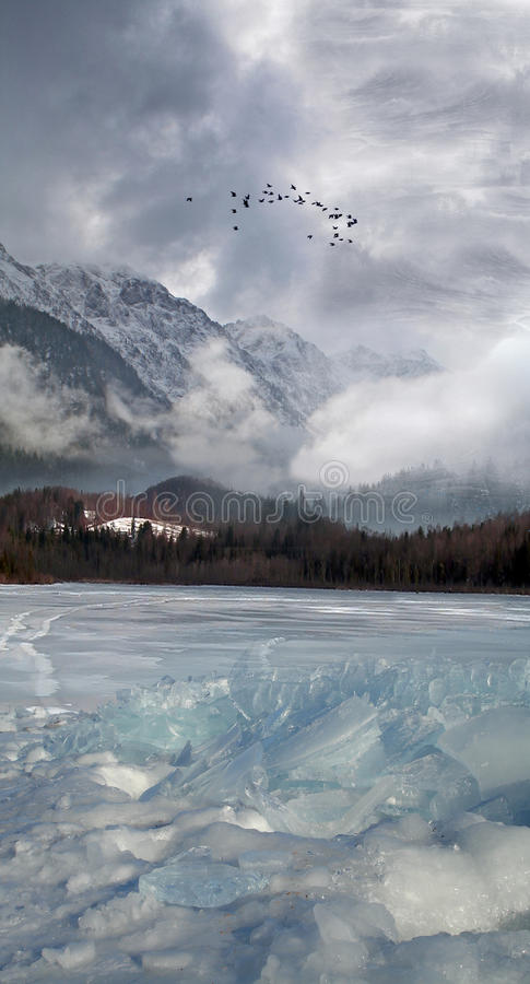 Winter Background. Mountains, Bird and frozen Lake royalty free illustration