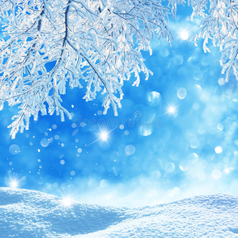 Download Winter background stock photo. Image of background, rime - 37533130