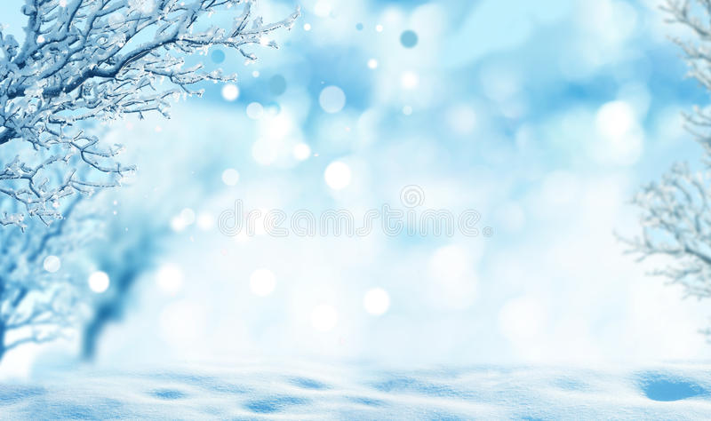 Download Winter background stock photo. Image of blur, forest - 37533348