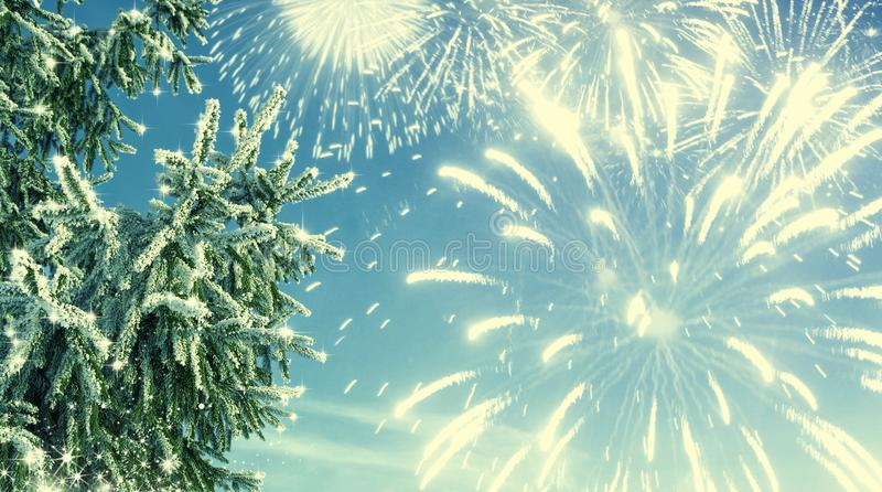Winter background of frost fir branch and fireworks. New year ba royalty free stock photography