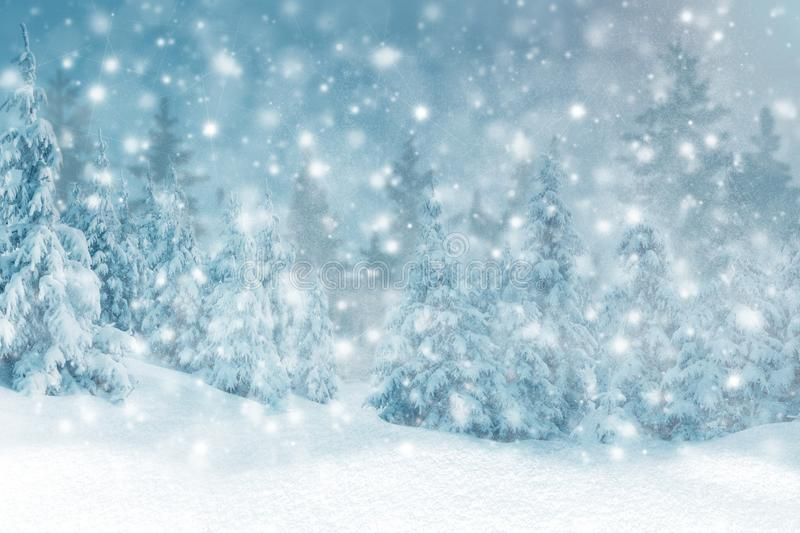 Winter background of snow and the frost with free space for your decoration. Christmas background. Winter background of snow and frost with free space for your royalty free stock image