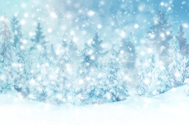 Winter background of snow and the frost with free space for your decoration. Christmas background. Winter background of snow and frost with free space for your royalty free stock photos