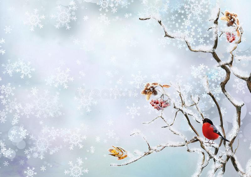 Winter background with snowflakes and a bird bullfinch on the branches of a tree. Bird bullfinch on snowy tree branches on a winter background royalty free illustration