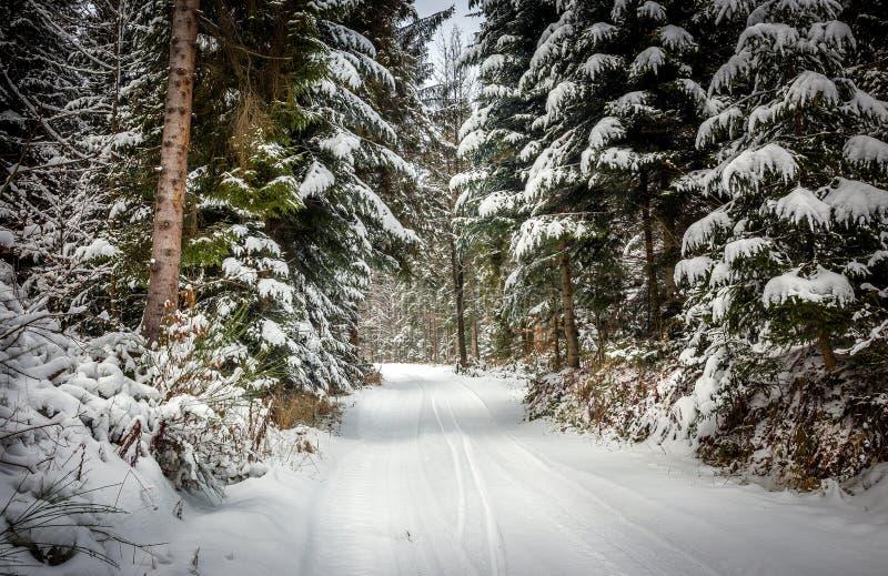 Winter Backroad lizenzfreie stockbilder