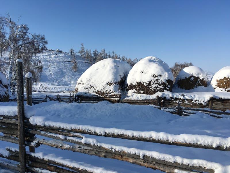 Winter Baihaba village in Xinjiang, China royalty free stock photo