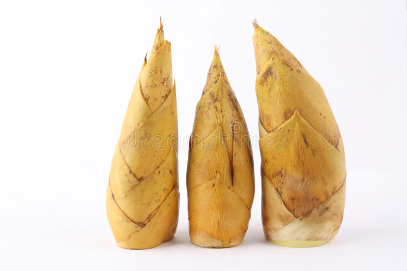 Download Winter bamboo shoots stock image. Image of fiber, natural - 12215379
