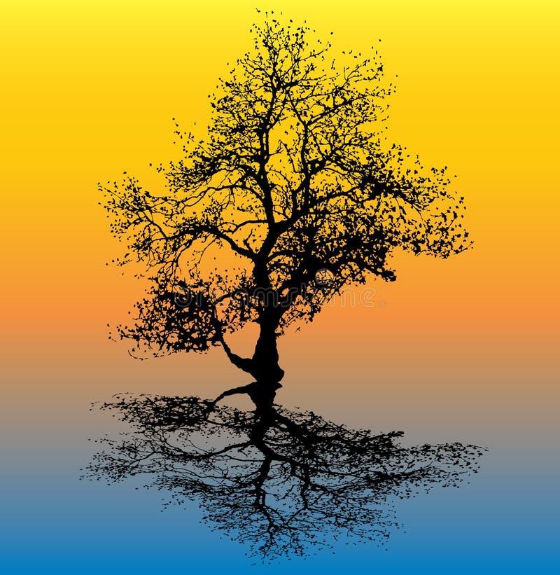Winter-Baum-Reflexion stock abbildung