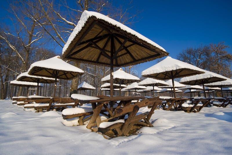 Download Winter beauty stock photo. Image of belgrade, stump, wallpapers - 12846918